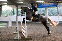 First double clear for 37 years - 70cm