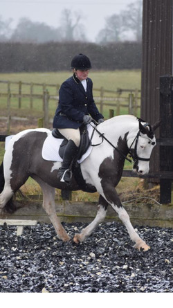 First dressage this year