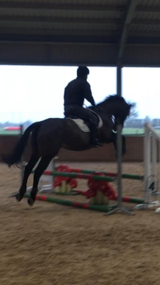First clear round jumping
