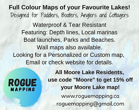 Rogue Mapping ad.jpg