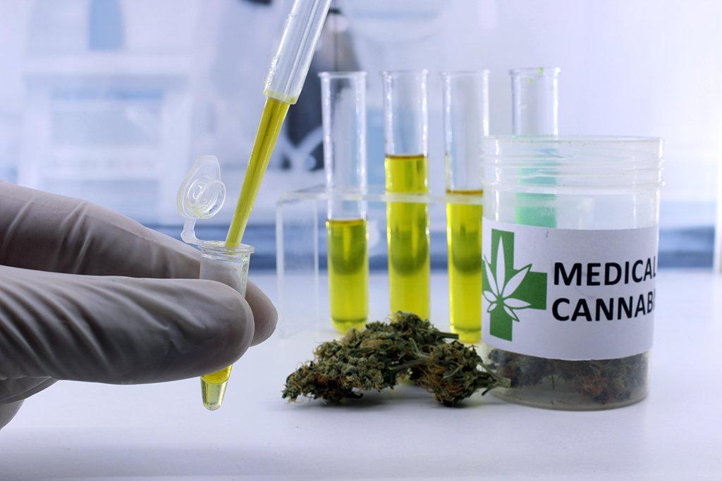 Medical Hemp Benefits Consultation