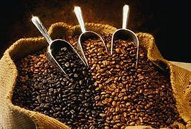 gall.6.coffee.beans.jpg