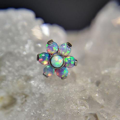 QualiTi 'Angel Blossom' Opal Flower