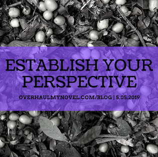 Establish Your Perspective