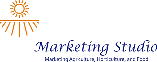 Marketing Studio logo for web header.png