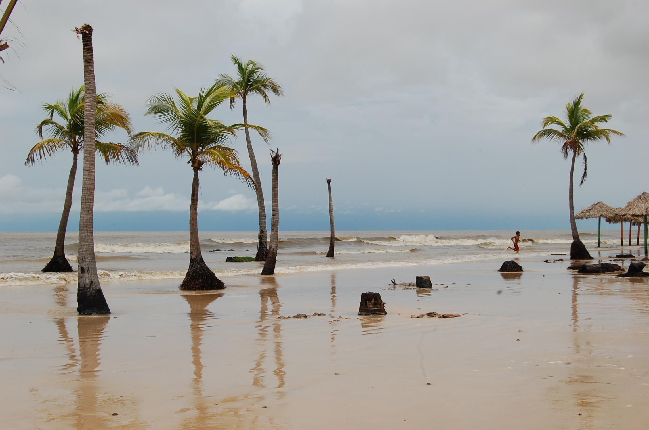 Captação de Imagem na ilha do marajó