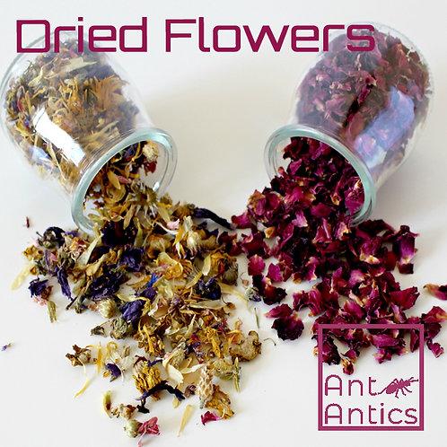 Organic Dried Flowers