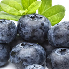 Blueberry (Shake & Vape)