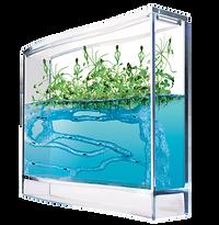 kisspng-ants-and-plants-formicarium-ecosystem-ant-farm-5b0a03a2e9ef30.0026393015273829469582.png