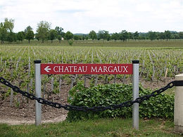chateau margaux.JPG