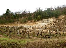 appellation-cahors-2.jpg