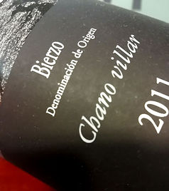 vins-etranger-bierzo-2.jpg