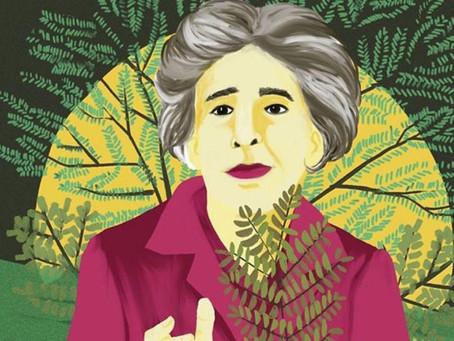 Ley Yolanda: ¿por qué es la herramienta de cambio hacia un futuro sostenible en la Argentina?