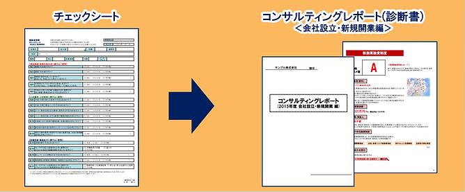 コンサルティングレポート(会社設立・新規開業編)