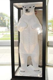 inside bear2 sm.jpg