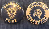 1970 Buttons