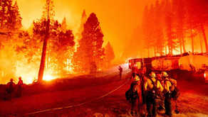 Wildfires Spark Sense of Community