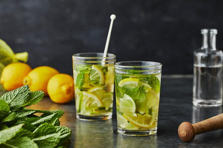 21657_Mint & Citrus Sangria.jpg