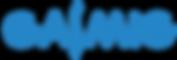 Logo Azul transparente.png