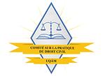Pratique du droit civil.png