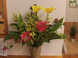 今日の花 チューリップ、アスター、ソリダコ、ドラセナ