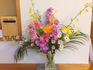 今日の花 ガーベラ、ストックなど