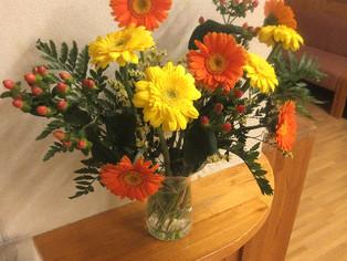 今日の花 ヒペリカム ガーベラ2種