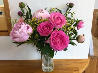 今日の花 しゃくやく バラ