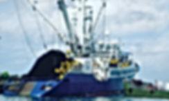 Marine Fuels - CaribbeanFuels