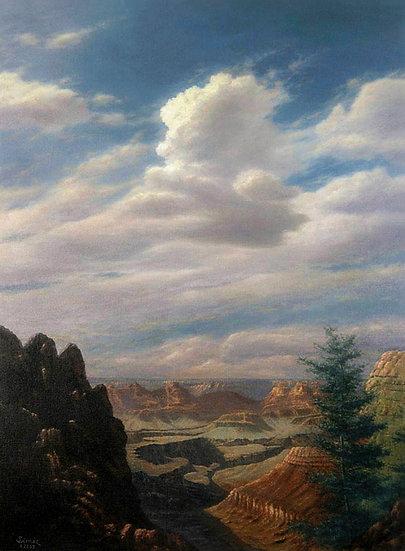 Grand Canyon South Rim View