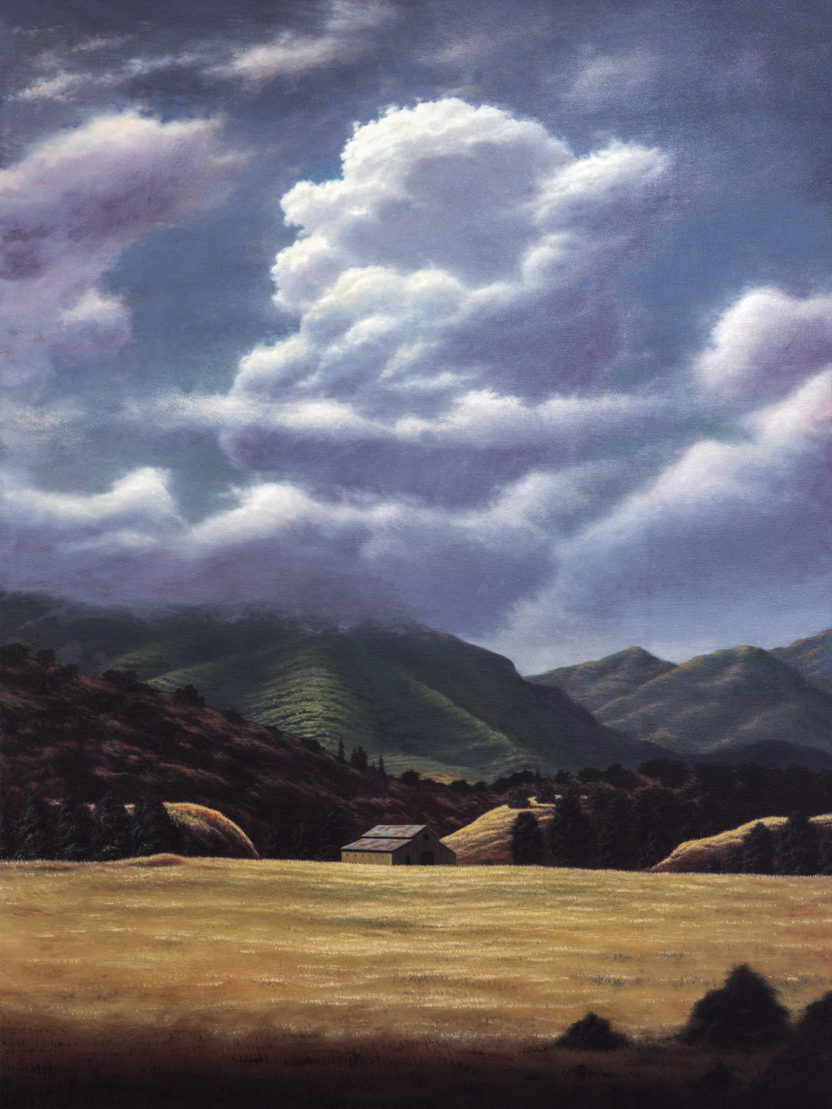 California Landscape  36x48