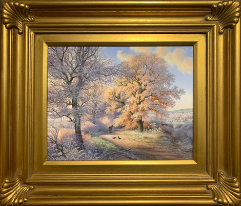 """""""Early Frost Near Chipping Camden Cotswolds"""""""