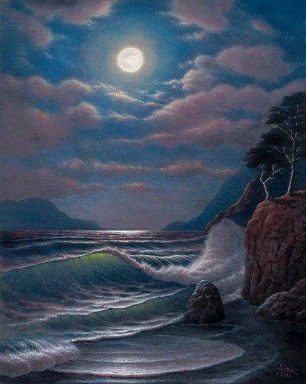 Cypress Moonlight