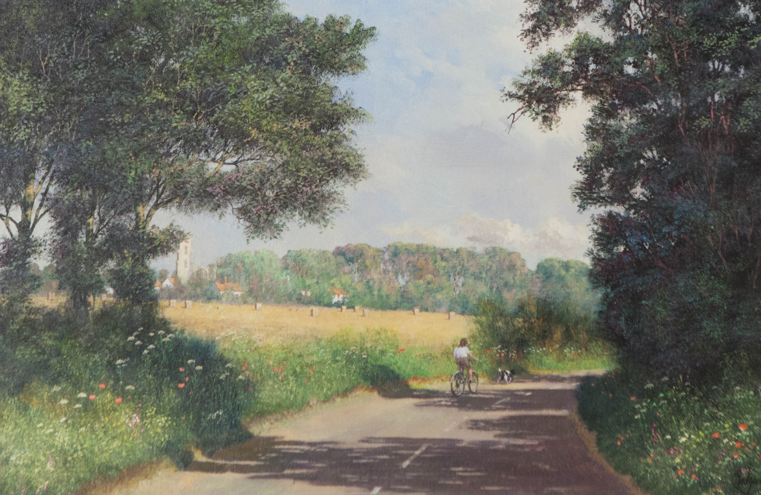CYCLING ALONG COUNTRY ROAD