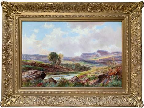 """""""Extensive Landscape"""""""