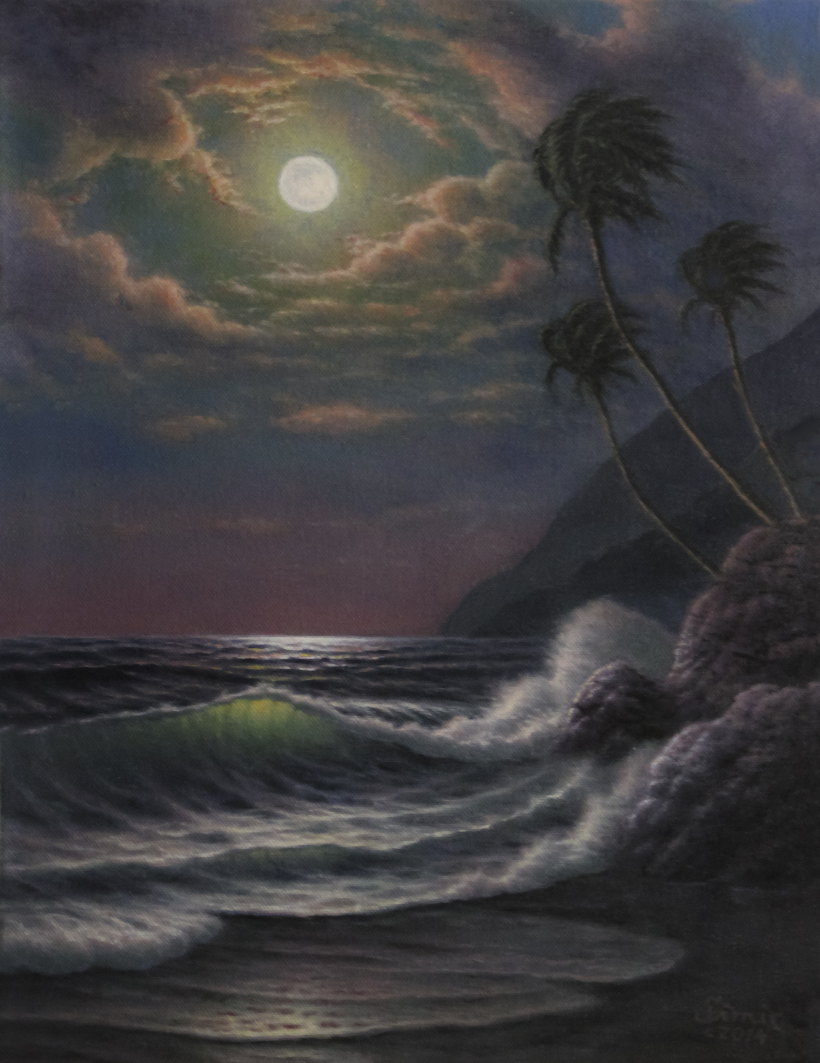 Tropical Moonlight 18x14