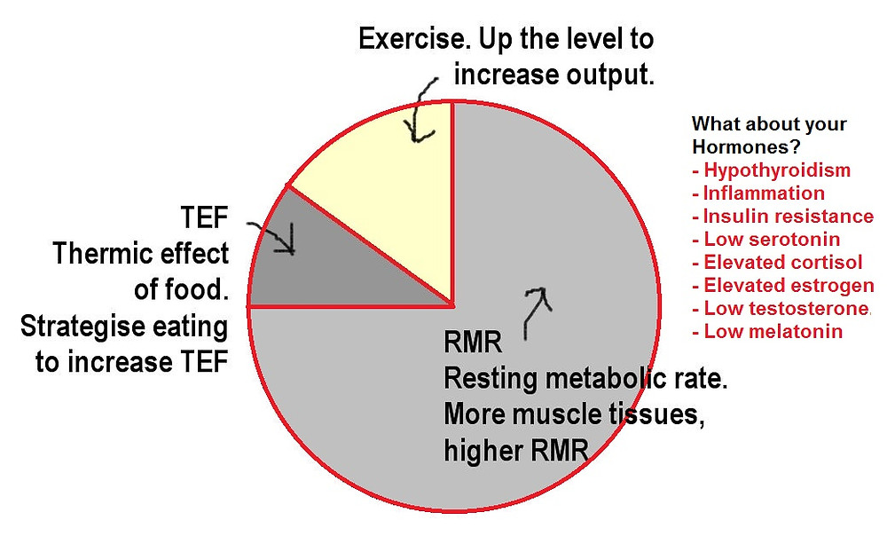 Losing weight = up the RMR + TEF + Exercise + Hormonal balancing