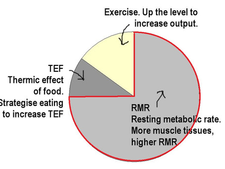 How To Really Lose Weight - Boost Your Resting Metabolic Rate (Part 2/5)