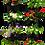 Thumbnail: Buy 3 Take 4: Vertical Flowerpots 32 Pocket