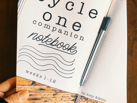 Cycle 1, 2, 3 Companion Notebook Suggestions