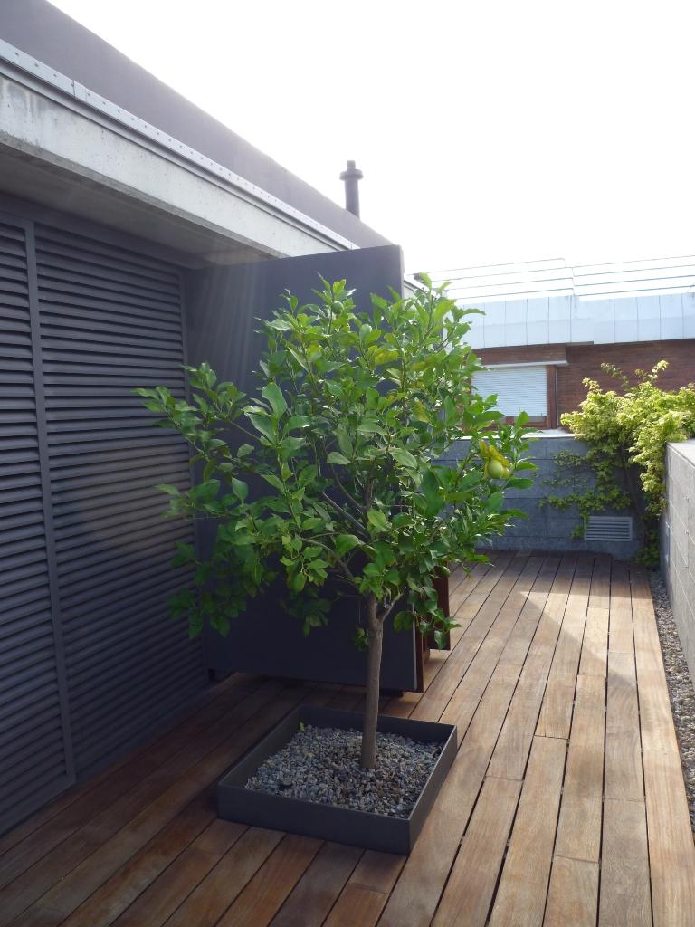 Tarima iroko terraza