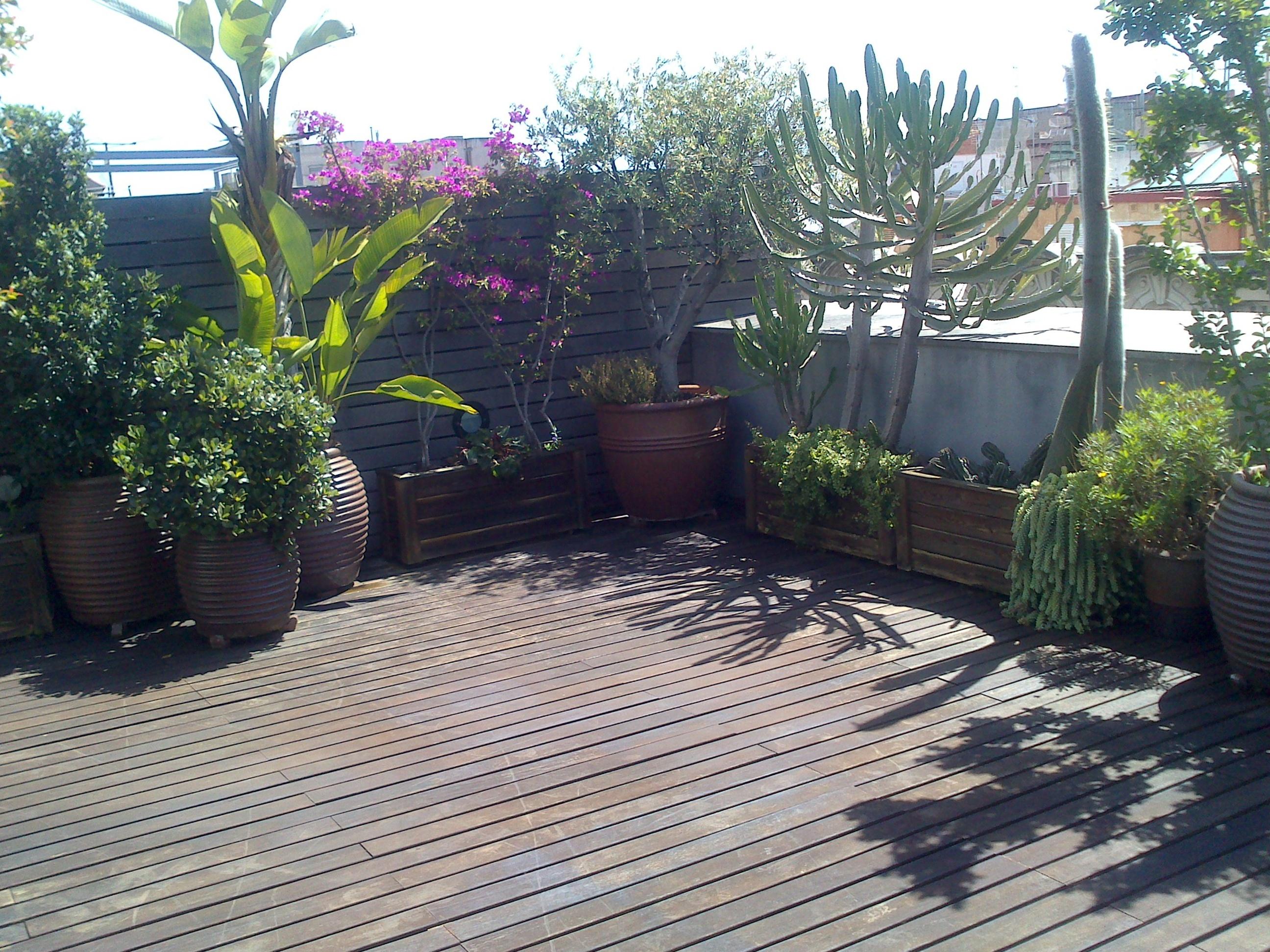Tarima terraza