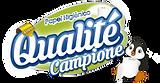 ipel_indaial_papel_site_marcas_qualite_c