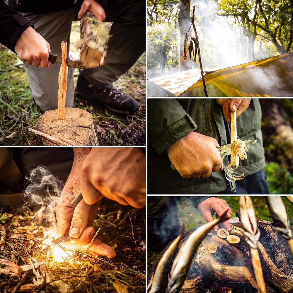 selection of photos showing coastal survival skills in action