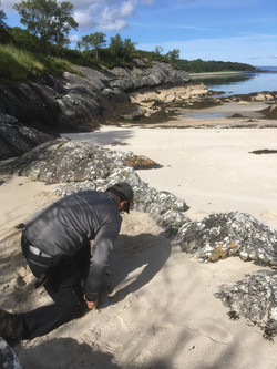 Leave No Trace consultancy courses
