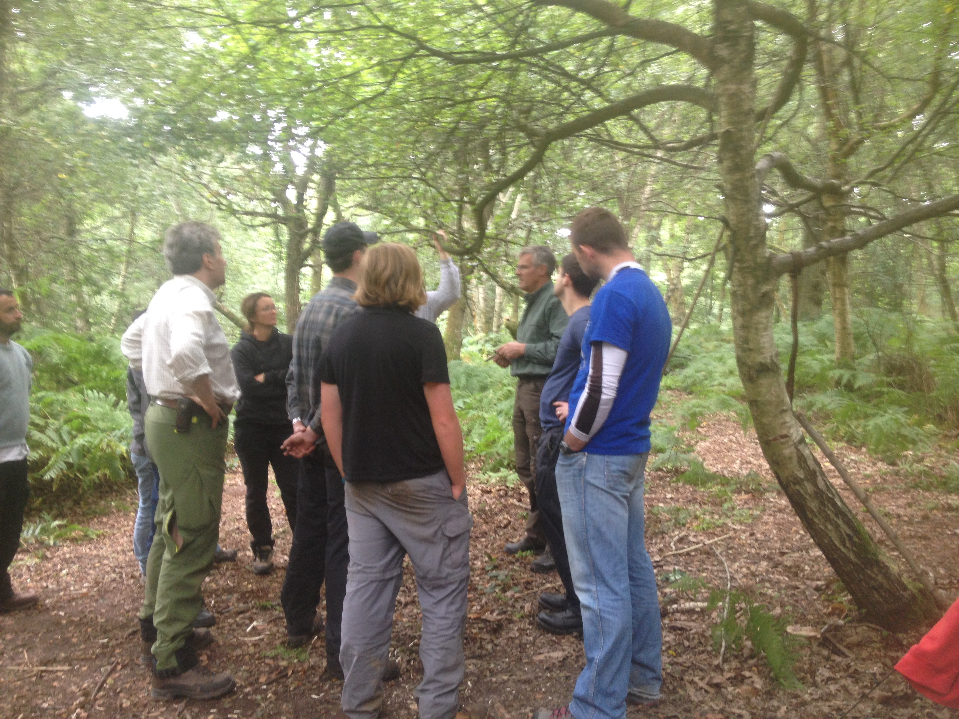 Basic bushcraft skills day course UK