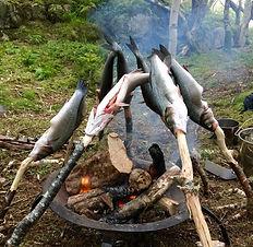 fishonsticks.jpg