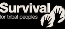 Survival International supporter Wildwood Bushcraft UK Survival Courses