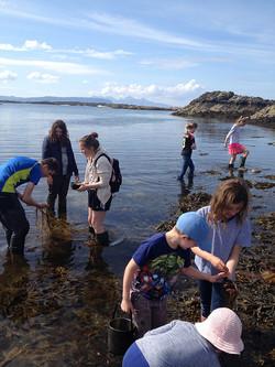 School day coast foraging Scotland