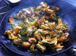 chanterelles, wrack and mussels